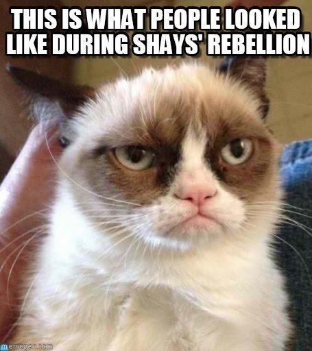 shays-cat